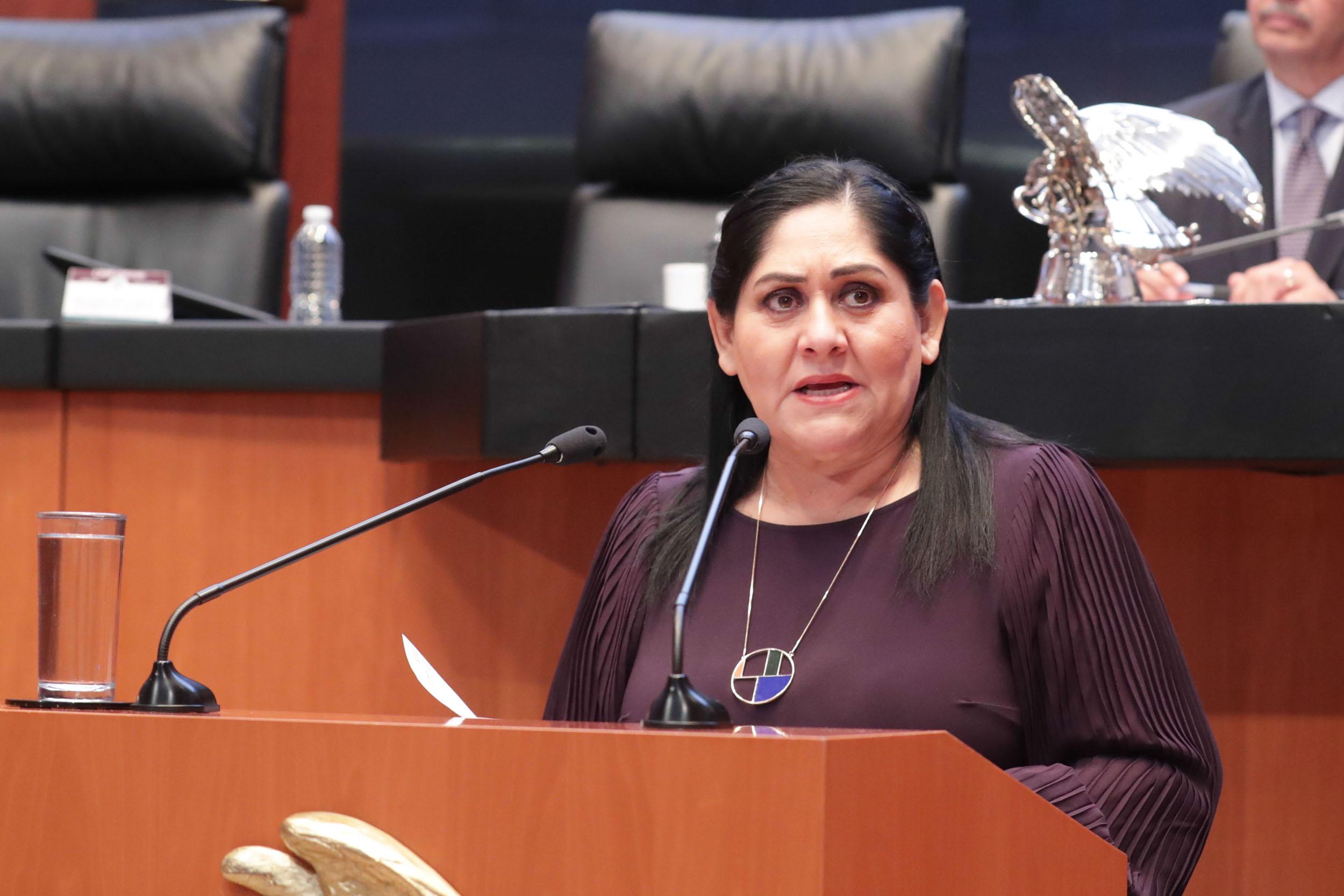 Senadora busca armonizar la ley de la policía federal en materia de asuntos migratorios
